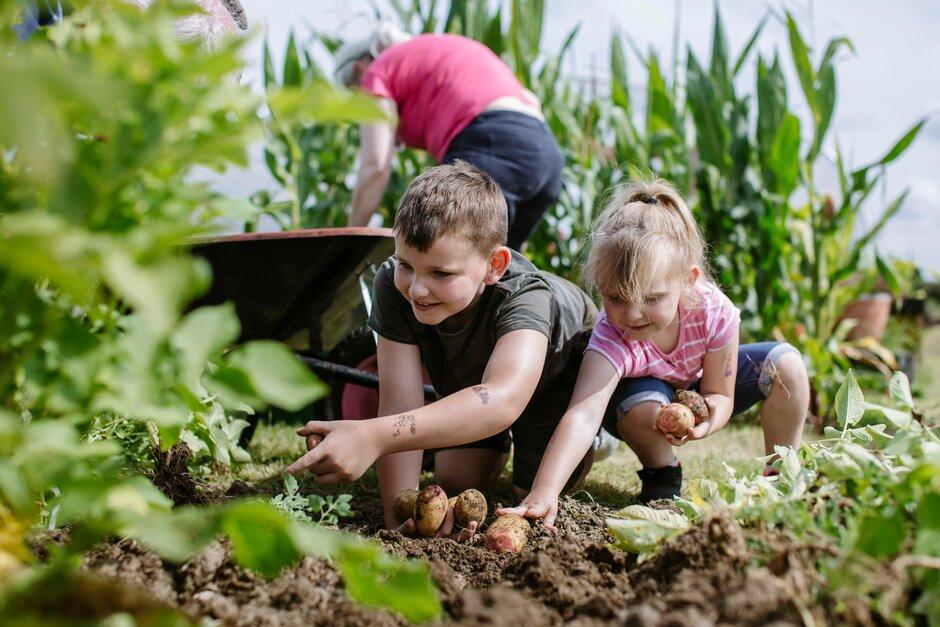 6 Beneficios de la jardinería para niños